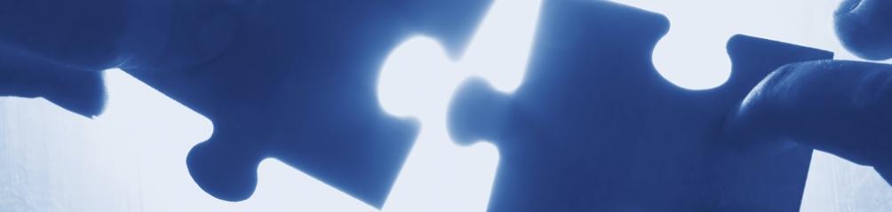 Optimized-puzzlepieces